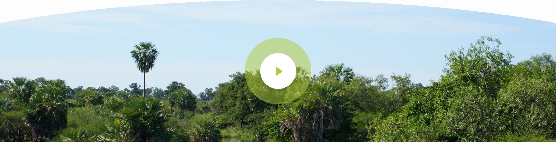 hoverbox-hintergrund-Video-hover
