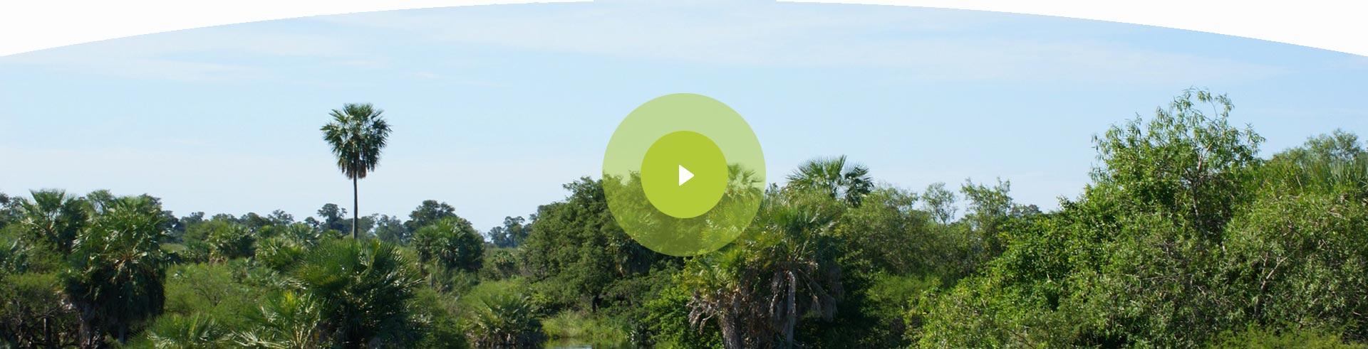 hoverbox-hintergrund_video